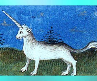 D'après La Licorne, Livre des propriétés des choses de Barthélemy l'Anglais (copie), début XVe siècle. (Marsailly/Blogostelle)
