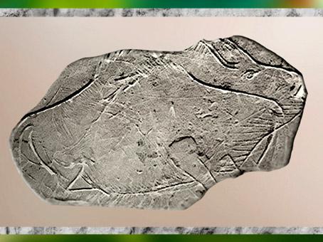 D'après un bison gravé sur plaquette, grotte d'Isturitz, Pyrénées, France, Magdalénien, paléolithique supérieur. (Marsailly/Blogostelle)