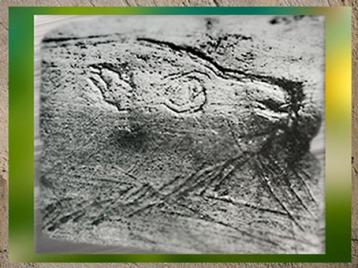 D'après un canidé gravé, bois de renne, style naturaliste, paléolithique supérieur. (Marsailly/Blogostelle)