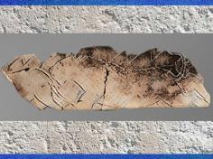 D'après La frise des lions, gravure sur os, grotte de La Vache, vers 11 000 ans avjc, Magdalénien, France, Paléolithique supérieur. (Marsailly/Blogostelle)