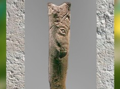 D'après un bâton percé, bison gravé, Isturitz, Magdalénien, 18000-10000 avjc, Pyrénées, France, Paléolithique supérieur. (Marsailly-Blogostelle)
