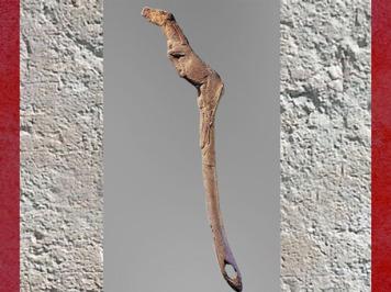 D'après un propulseur cheval, bois de renne, vers 12000 avjc, Bruniquel, Tarn-et-Garonne, Magdalénien, France, Paléolithique supérieur. (Marsailly/Blogostelle)