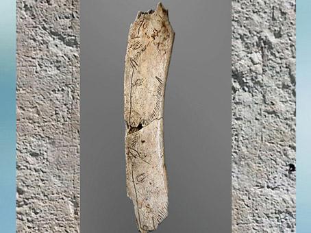 D'après une pendeloque, chevaux gravés, ivoire, Bruniquel, Tarn-et-Garonne, magdalénien, France, paléolithique supérieur. (Marsailly/Blogostelle)