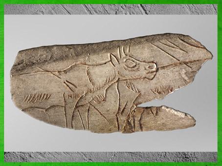 D'après un bovidé, os gravé, La Madeleine, 18 000 -10 000 avjc, magdalénien, France, paléolithique supérieur. (Marsailly/Blogostelle)