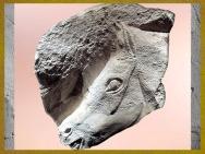 D'après un cheval sculpté, bloc de pierre, vers 15 000 ans avjc, Magdalénien, paléolithique supérieur. (Marsailly/Blogostelle)