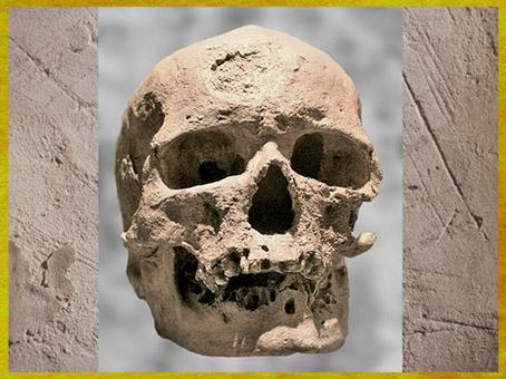D'après un crâne d'Homo sapiens, abri-sous-roche, Eyzies-de-Tayac, Dordogne, paléolithique supérieur. (Marsailly/Blogostelle)