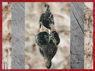 D'après la Vénus de Lespugue, vers 20 000 avjc, Haute-Garonne, France, Gravettien, paléolithique. (Marsailly/Blogostelle)