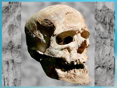 D'après Homo sapiens,  crâne dit le Vieillard, abri-sous-roche, Eyzies-de-Tayac, Dordogne, paléolithique supérieur. (Marsailly/Blogostelle)