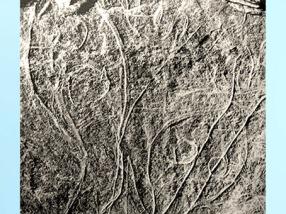 D'après des silhouettes humaines, gravure sur plaquette de schiste, site de Gönnersdorf, Allemagne, Magdalénien, paléolithique supérieur. (Marsailly/Blogostelle)