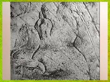 D'après une figuration humaine, gravure, Sourzac, Dordogne, vers 25000-20 000 ans avjc, Gravettien, France, paléolithique supérieur. (Marsailly/Blogostelle)