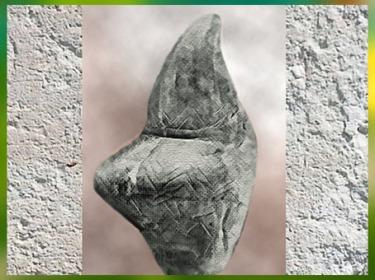 D'après la Vénus de Menzin, pierre gravée, ornements corporels,  Russie, paléolithique supérieur. (Marsailly/Blogostelle)