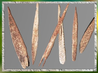 D'après des pointes de sagaies, bois de renne, magdalénien, paléolithique supérieur. (Marsailly/Blogostelle)