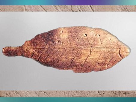 D'après un poisson gravé, os, Lespugue, Haute-Garonne, France, gravettien, paléolithique. (Marsailly/Blogostelle)