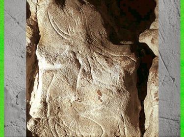 D'après la figure dite Sorcier de Gabillou, gravure, grotte du Gabillou, vers 25000 ans avjc, Gravettien, Sourzac, Dordogne, paléolithique supérieur. (Marsailly/Blogostelle)