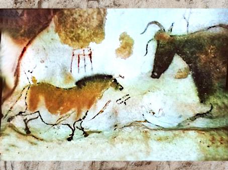 D'après un cheval, graphismes et taureau, peinture rupestre grotte de Lascaux, vers 18 000 -10 000 avjc, magdalénien, Dordogne, paléolithique supérieur. (Marsailly/Blogostelle)