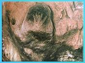 D'après une main sur fond noir, grottes de Gargas, Hautes-Pyrénées, France, paléolithique supérieur. (Marsailly/Blogostelle)