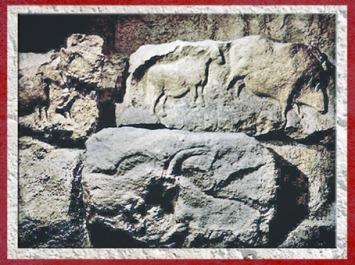 D'après des animaux sculptés, cheval, bison, bouquetin, Roc de Sers, Charente, Solutréen, France, paléolithique. (Marsailly/Blogostelle)