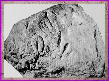 D'après des représentations vulvaires, bloc sculpté, aurignacien, abri-du-Cellier, Tursac, Dordogne, paléolithique supérieur. (Marsailly/Blogostelle)