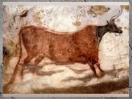 D'après la vache rouge, à tête noire, grotte de Lascaux, vers 18 000 avjc, Magdalénien, Dordogne, France, Paléolithique supérieur. (Marsailly/Blogostelle)