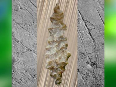 D'après une pointe denticulée, dite feuille de laurier, silex taillé, vers 20 000-18 000 ans avjc, Solutréen, Solutréen, paléolitique supérieur. (Marsailly/Blogostelle)