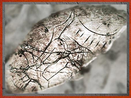 D'après une rondelle, détail, os incisé de graphismes, Mas-d'Azil, Ariège, magdalénien, France, paléolithique supérieur. (Marsailly/Blogostelle)