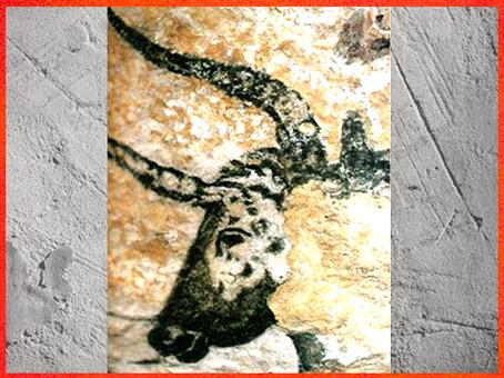 D'après un taureau, peinture, grotte de Lascaux, Dordogne, France, Magdalénien, paléolithique supérieur. (Marsailly/Blogostelle)