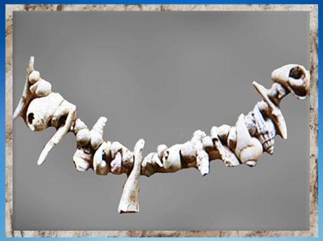 D'après une parure de coquillages, aurignacien, abri-sous-roche de Castanet, France, paléolithique supérieur. (Marsailly/Blogostelle)