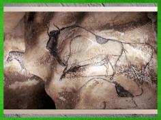 D'après un grand bison, grotte Chauvet, Pont d'Arc, Ardèche, vers 36 000 ans avjc, Aurignacien, France, paléolithique supérieur. (Marsailly/Blogostelle)