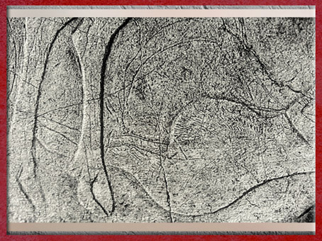 D'après une femme enceinte et un cervidé, gravure, magdalénien, Laugerie-Basse, Eyzies-de-Tayac, France, paléolithique. (Marsailly/Blogostelle)