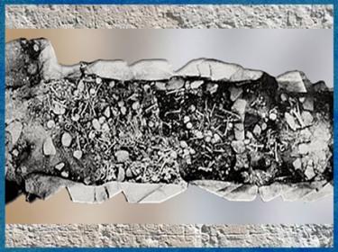 D'après une sépulture collective, 2700-2200 avjc, La Chaussée Tirancourt, Somme, France, néolithique. (Marsailly/Blogostelle)