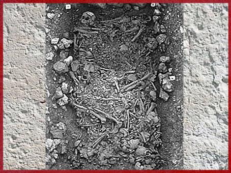 D'après une sépulture collective, Yonne, France, néolithique. (Marsailly/Blogostelle)