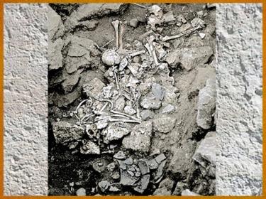 D'après une sépulture collective, village de Champ-Durand, Nieul-sur-l'Autise Vendée, France, néolithique. (Marsailly/Blogostelle)