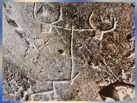 D'après un attelage de bovidés, art rupestre, mont Bego, Vallée des Merveilles, fin IIIe-début IIe millénaire avjc, Alpes Maritimes, âge du Cuivre et du Bronze. (Marsailly/Blogostelle)