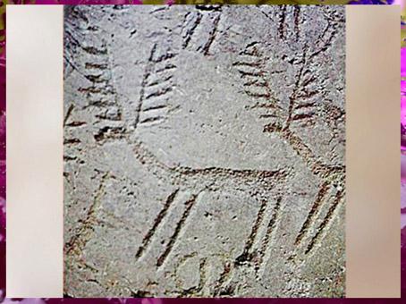 D'après des cervidés, cerfs, art rupestre, val Carmonica, Italie, âge du Bronze. (Marsailly/Blogostelle)