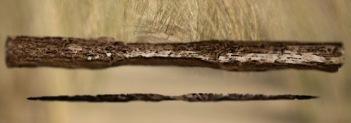 D'après un arc et une poignée d'arc,Holmegaard, Danemark, période Mésolithique. (Marsailly/Blogostelle)