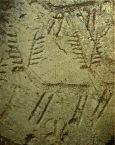 D'après l'art rupestre de l'âge du Bronze en Italie, le thème des cervidés. (Marsailly/Blogostelle.)
