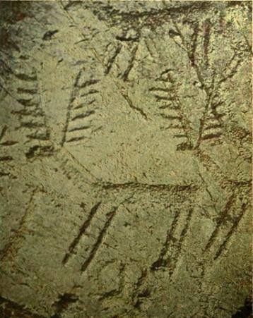 D'après des cervidés, art rupestre, Italie, âge du Bronze.(Marsailly/Blogostelle)