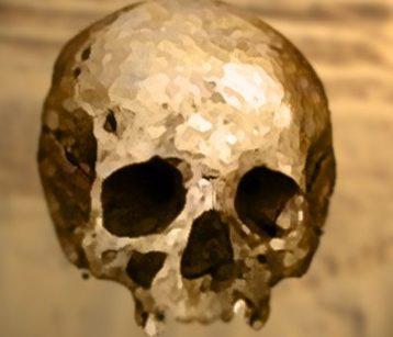 D'après un crâne de l'âge du Bronze. (Marsailly/Blogostelle)