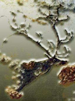 D'après l'iconographie préhistorique du cervidé, paléolithique supérieur.(Marsailly/Blogostelle)