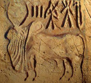 D'après un sceau à motif de zébu en stéatite, Harappa, vers 2300-1750 avjc, civilisation de l'Indus. (Marsailly/Blogostelle)