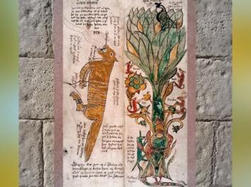 D'après le Loup Fenrir, associé à Odhin, et Yggdrasil, l'Aigle à la cime, la vipère sous les racines, XVIIe siècle, Islande, mythologie nordique. (Marsailly/Blogostelle)