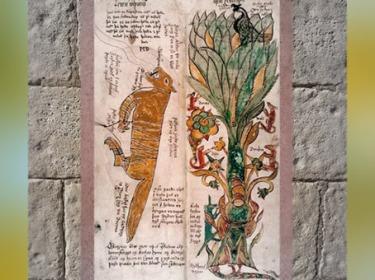 D'aprèsle Loup Fenrir, associé à Odhin, et Yggdrasil, l'Aigle à la cime, la vipère sous les racines, XVIIe siècle, Islande, mythologie nordique. (Marsailly/Blogostelle)