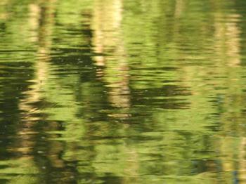 D'après des marais, les sanctuaires celtes sont proches des étendus d'eau. (Marsailly/Blogostelle)