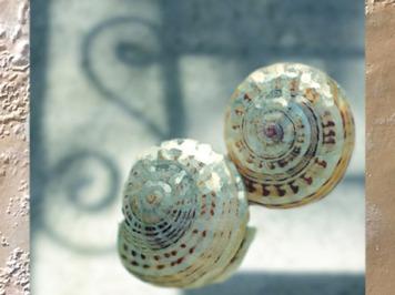 D'après la coquille en spirale des escargots. (Marsailly/Blogostelle)