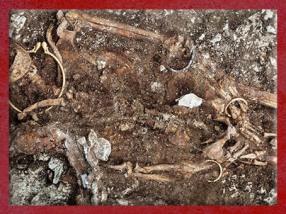 D'après le défunt et ses bijoux, tombe celte de Lavau, Ve siècle avjc, fin Hallstatt-La Tène, âge du Fer. (Marsailly/Blogostelle)