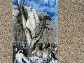 D'après Gustave Doré, XIXe siècle : la cueillette du gui... (Marsailly/Blogostelle.)
