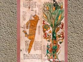 D'après le Loup Fenrir, associé à Odhin, l'Arbre Yggdrasil, l'Aigle, la vipère, XVIIe siècle, Islande. (Marsailly/Blogostelle.)