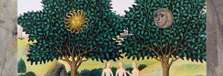 2 L'Arbre mythique : fertilité, généalogie etcreuset…