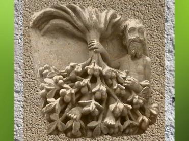 D'après le thème de l'Arbre renversé, Enseigne du Noyer Inversé, Poitier, vers XVIe siècle. (Marsailly/Blogostelle)