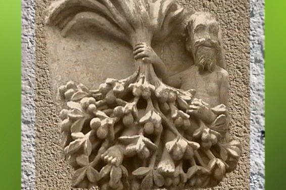D'après l'Arbre renversé, Enseigne du Noyer Inversé, Poitier, vers XVIe siècle. (Marsailly/Blogostelle)